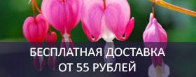 Бесплатная доставка при заказе от 550 000 рублей