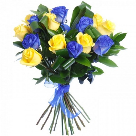 Купить синие розы в бресте купить цветы тюльпаны киев